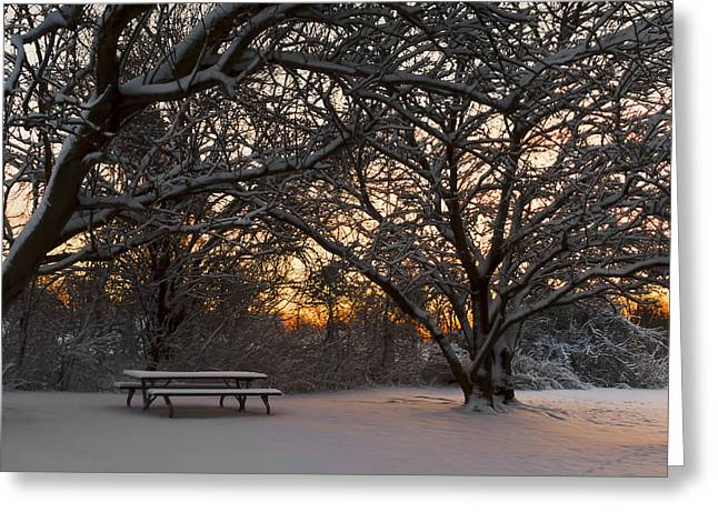 Quiet Moment Before Dawn Greeting Card by Yelena Rozov