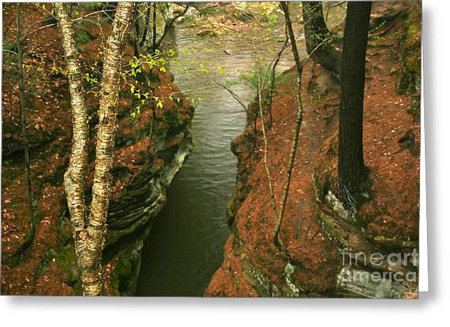 Quiet Rocky Gorge Greeting Card by Joan McArthur