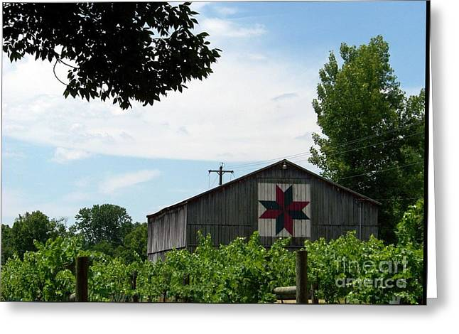Quilted Barn And Vineyard Greeting Card by Charles Robinson
