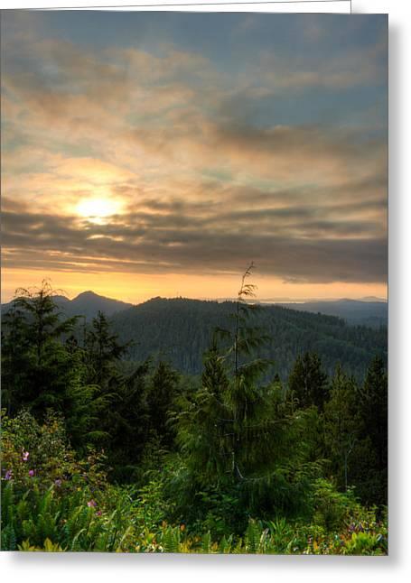 Radar Hill Sunset - Tofino Bc Canada Greeting Card by Matt Dobson