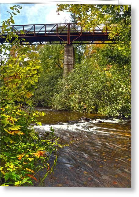 Railroad Bridge 7827 Greeting Card by Michael Peychich