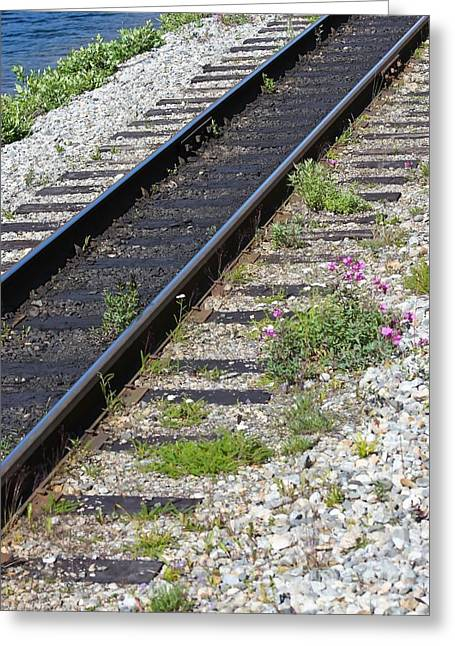 Railroad To Yukon Greeting Card by Sophie Vigneault