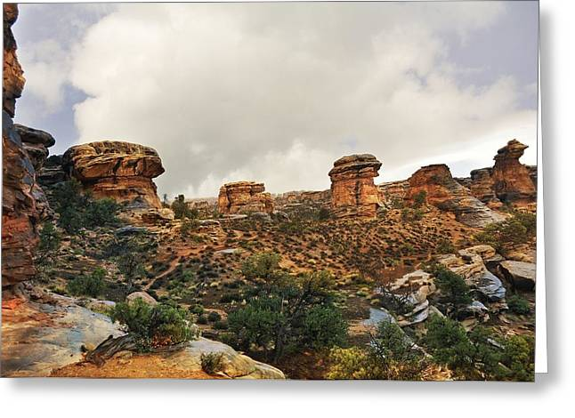 Rain At The Needles District Greeting Card by Marty Koch