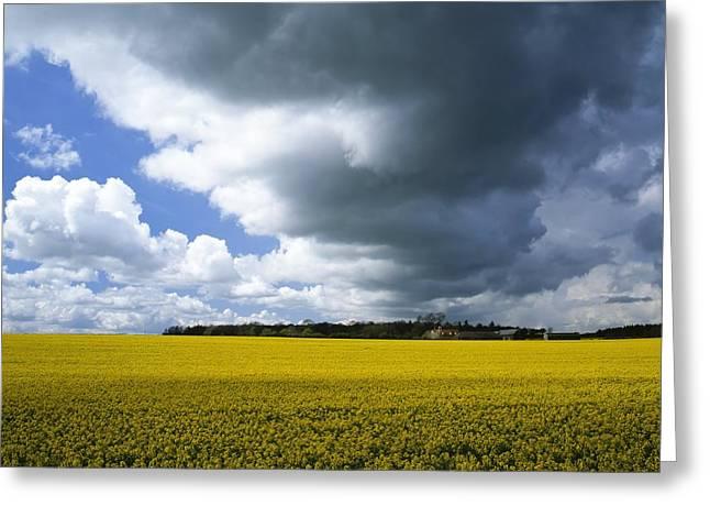 Rain Clouds Greeting Card by Adrian Bicker