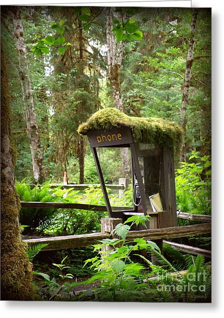 Rain Forest Telephone Booth Greeting Card by Tanya  Searcy