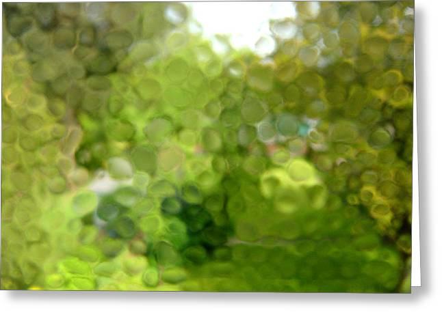Rain On Glass Greeting Card by Roberto Alamino