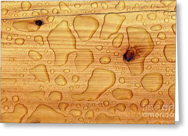 Greeting Card featuring the photograph Rain On Wood by Charles Lupica
