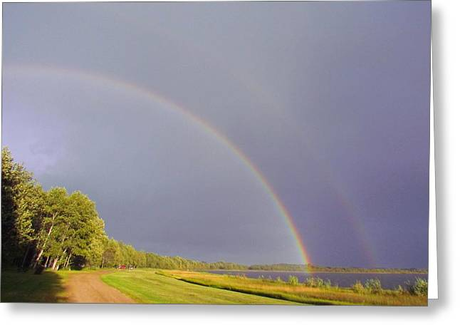 Rainbow - Double Vision Greeting Card by Andrea Arnold