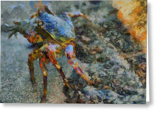 Rainbow Crab Greeting Card