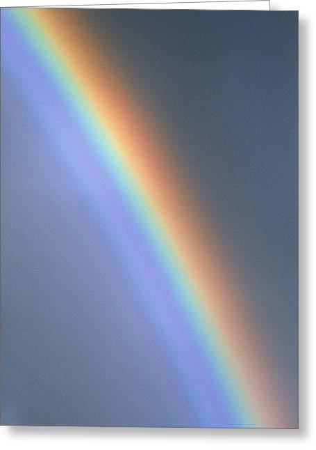 Rainbow Greeting Card by Dr Morley Read