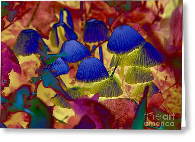 Rainbow Mushrooms Greeting Card by Erica Hanel