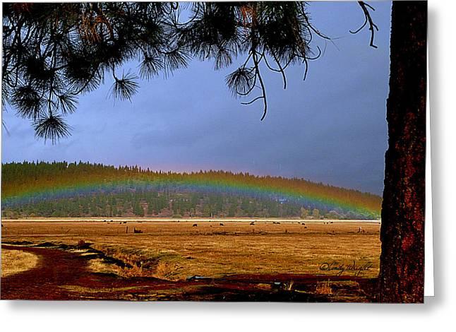 Rainbow Ridge Greeting Card by Cindy Wright