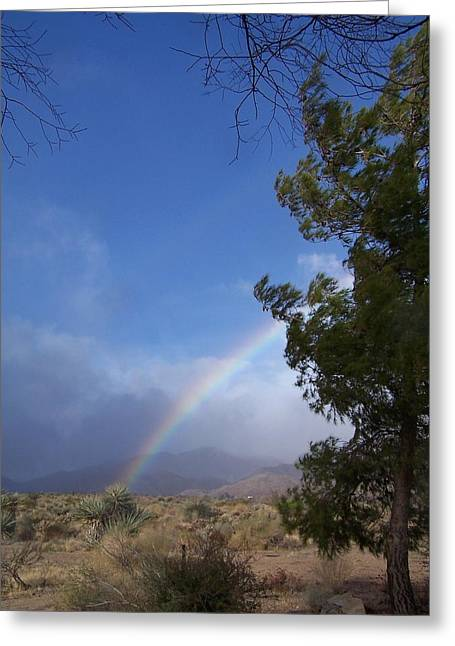 Rainbow Sky Greeting Card by Christine Drake