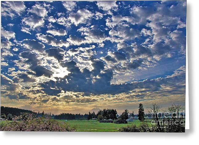 Rainier Country Greeting Card by Sean Griffin