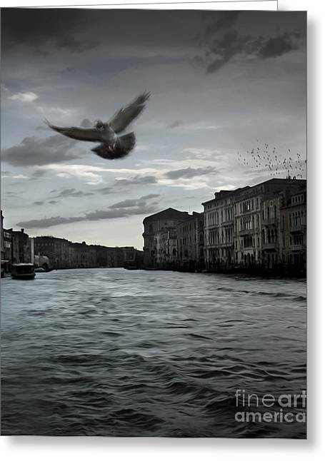 Rainy Day In Venice On The Grand Canal Greeting Card by Gregory Dyer