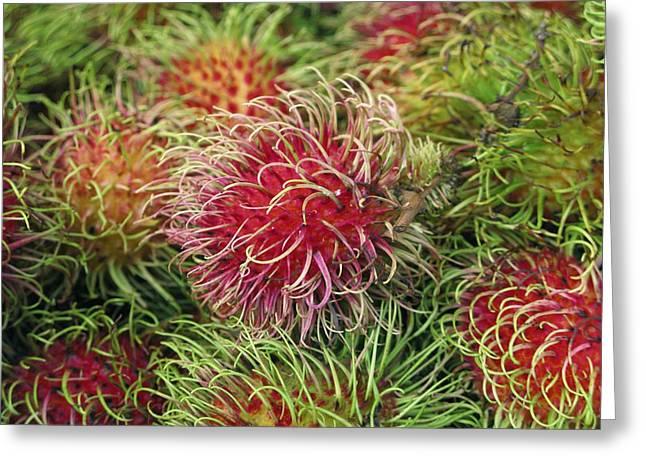 Rambutan Fruit (nephelium Lappaceum) Greeting Card by Bjorn Svensson