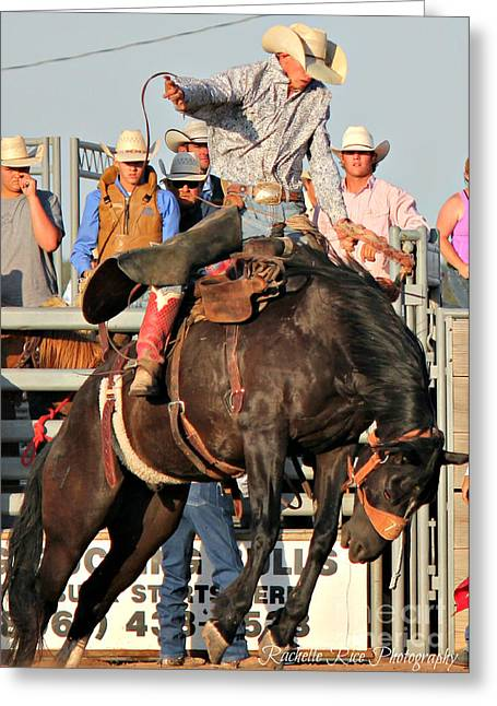Ranch Bronc Rider Greeting Card by Rachelle Rice