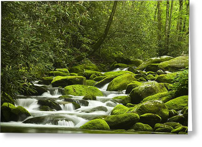 Rapids At Springtime Greeting Card by Andrew Soundarajan