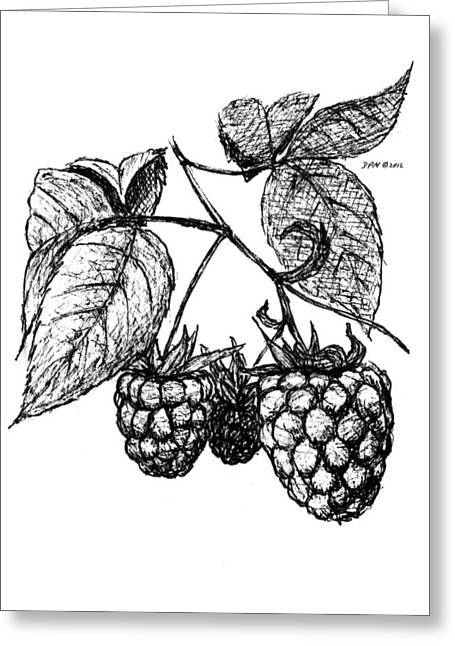 Raspberries Greeting Card by Daniel Paul Murphy