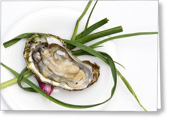 Raw Oyster Greeting Card by Charlotte Lake