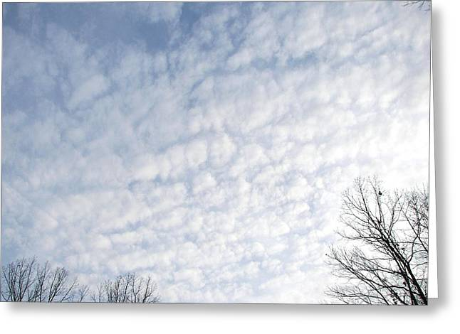 Greeting Card featuring the photograph Reaching The Clouds by Pamela Hyde Wilson