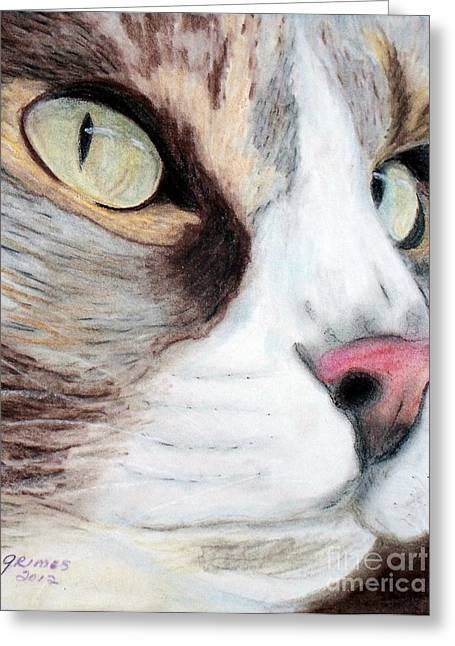 Really Intense Greeting Card by Carol Grimes