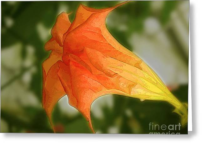 Red Angels Trumpet Flower Greeting Card