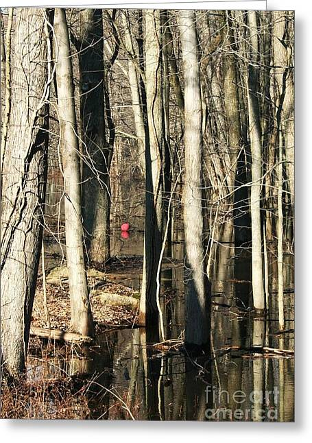 Red Ball 1 Greeting Card