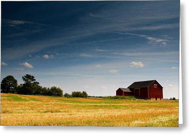 Red Barn Greeting Card by Cale Best