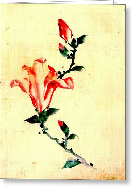 Red Blossom With Buds 1840 Greeting Card