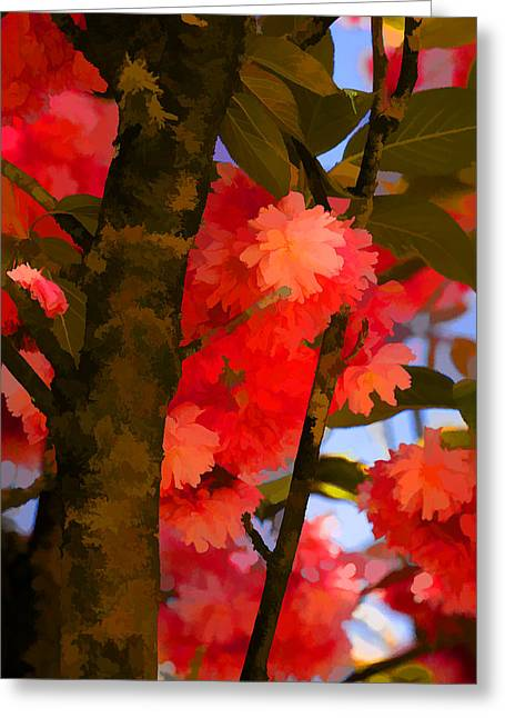 Red Blossomed Tree Greeting Card