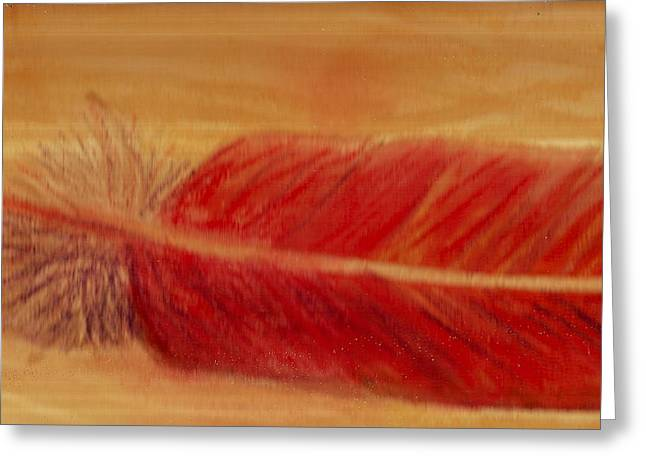 Red Feather Greeting Card by Anne-Elizabeth Whiteway
