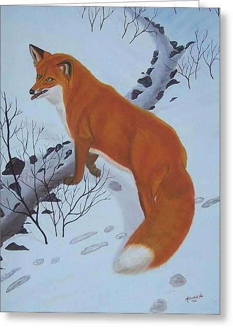 Red Fox In Snow Greeting Card by Melinda Fox