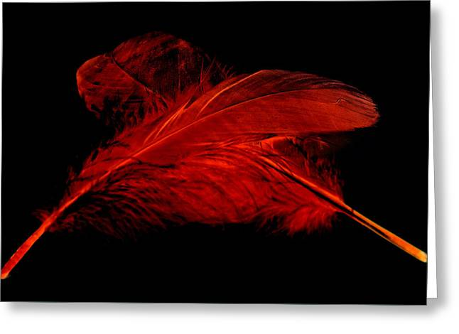 Red Ghost On Black Greeting Card by Steve Purnell