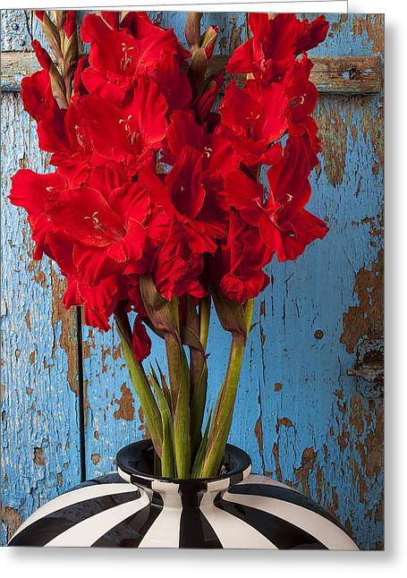 Red Glads Against Blue Wall Greeting Card by Garry Gay