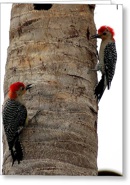 Red Headed Duet Greeting Card