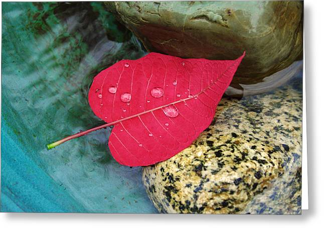Red Leaf Love Greeting Card