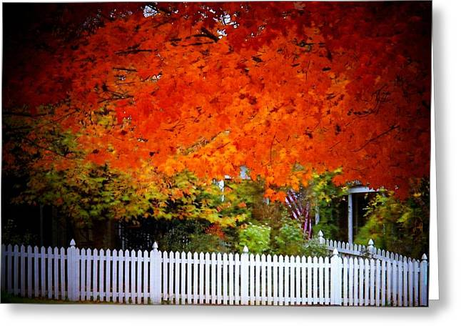 Red Leaves And White Fence Greeting Card by Joyce Kimble Smith