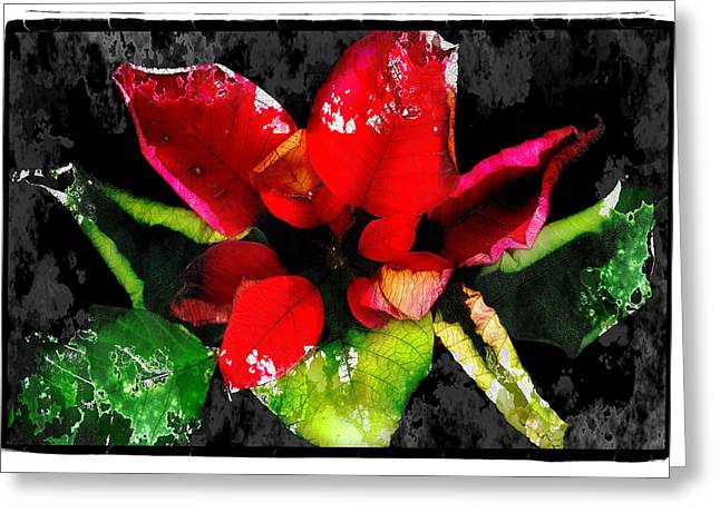 Red Leaves Greeting Card by Mauro Celotti