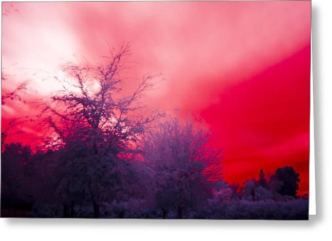 Red Greeting Card by Nicholas Evans