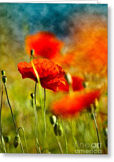 Red Poppy Flowers 01 Greeting Card by Nailia Schwarz