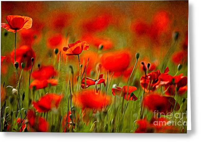 Red Poppy Flowers 02 Greeting Card by Nailia Schwarz