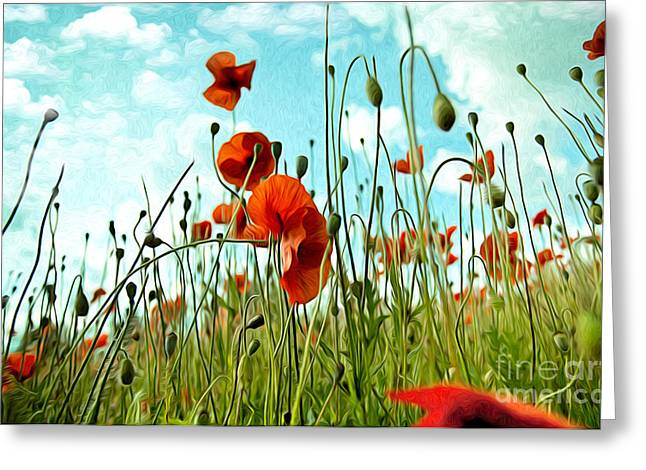 Red Poppy Flowers 03 Greeting Card by Nailia Schwarz