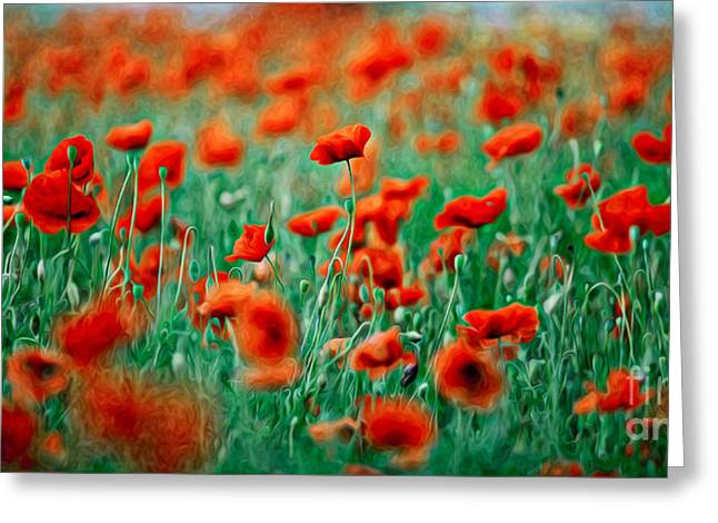 Red Poppy Flowers 04 Greeting Card by Nailia Schwarz