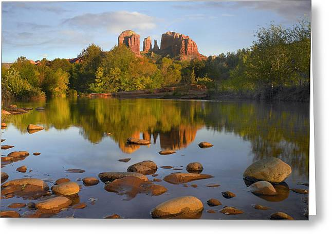 Red Rock Crossing Arizona Greeting Card by Tim Fitzharris