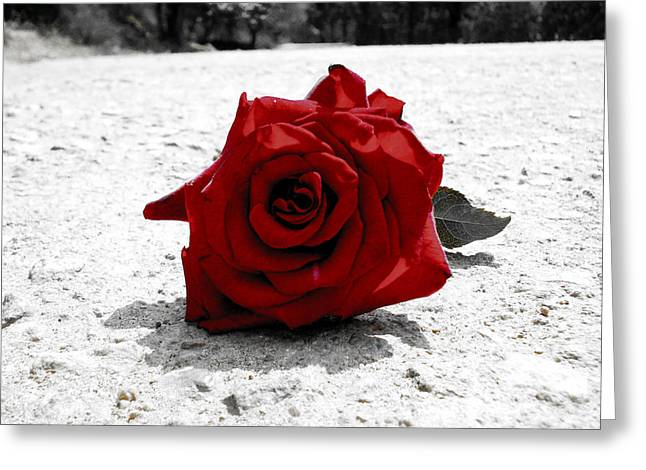 Red Rose On The Road Greeting Card by Sumit Mehndiratta