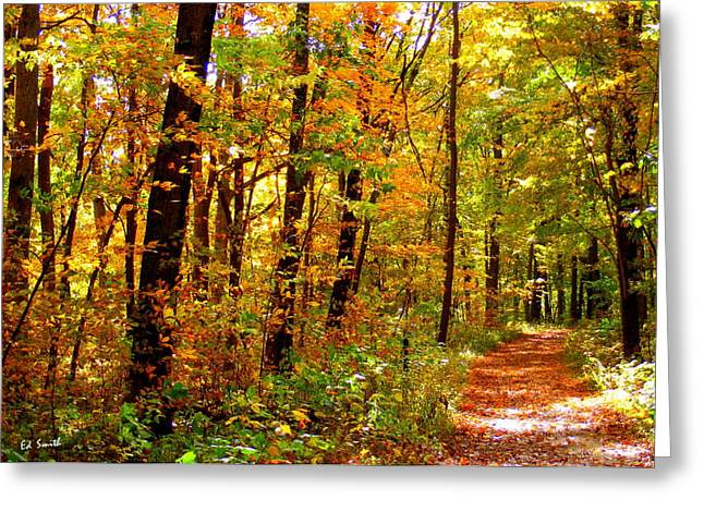 Red Run Trail Greeting Card