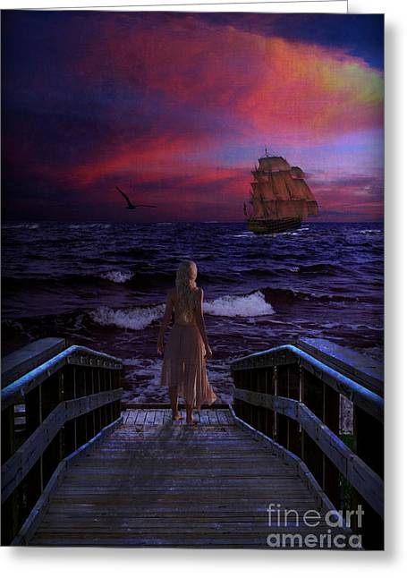 Red Sails In The Sunset Greeting Card by Lianne Schneider