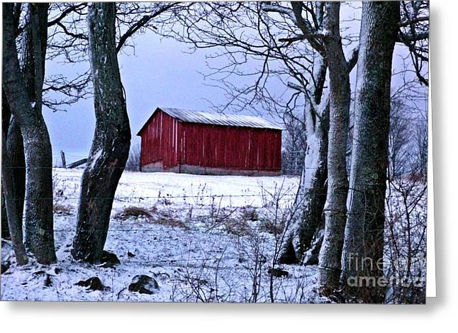 Red Shed In Winter Greeting Card by Christian Mattison