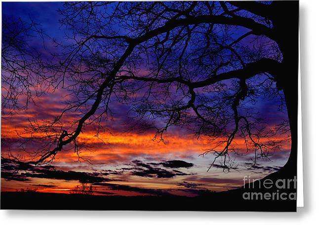 Red Sky At Morning Greeting Card by Thomas R Fletcher